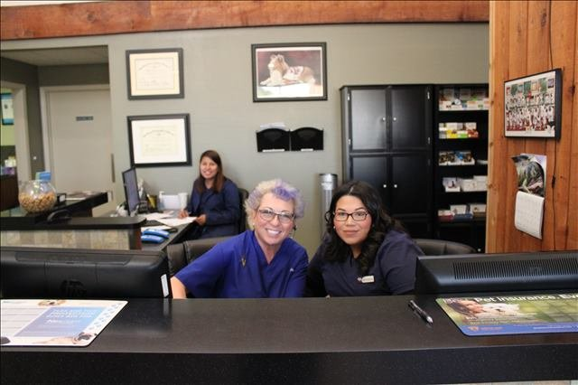Lakeside Animal Clinic's receptionists