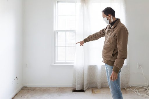 Prevent Mold Damage And Health Concerns With A Professional Inspection