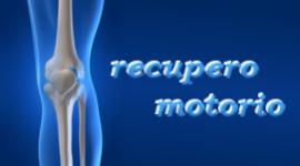 Posttraumatische Rehabilitation, Wiederherstellung der Funktionsfähigkeit der Gelenke, Rehabilitation der Muskelfunktionen