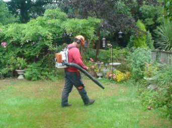 Reduction - Reading - Roots & Shoots - We will always leave your garden clean and tidy