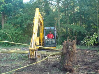 Reduction - Reigate - Roots & Shoots - Land clearance work near Sunningdale