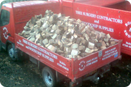 Firewood - Bristol - Roots & Shoots - log stumps