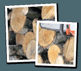 Woodchip - Bracknell - Roots & Shoots - Tree stumps