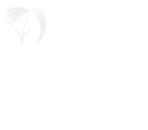 ortopedia sanitaria   gussago buonavita