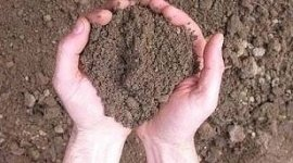 arricchimento terreni, fertilizzanti per terreni, prodotti per agricoltura