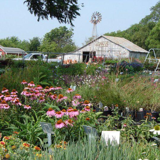 High Quality Garden Center