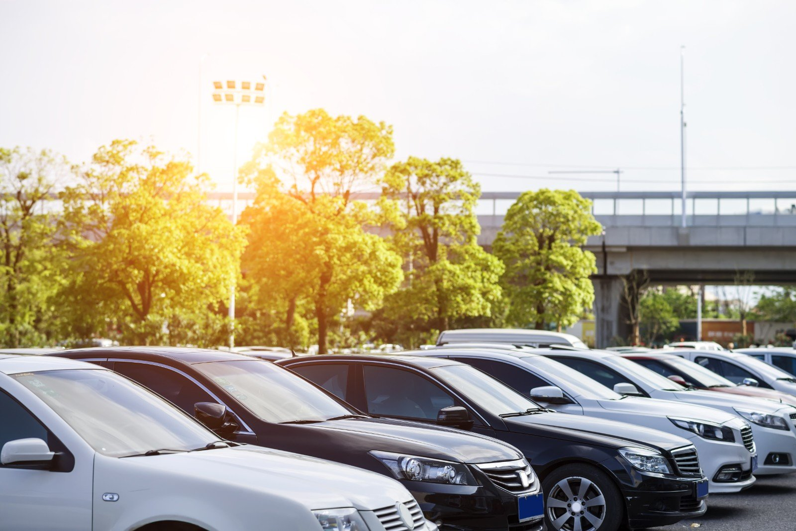 delle macchine in un parcheggio