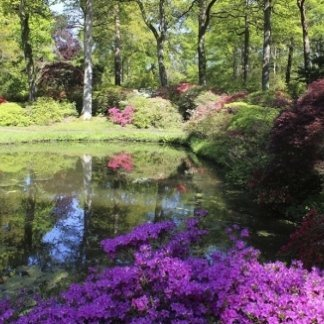giardini e spazi verdi