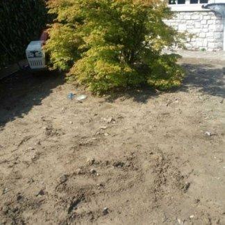 ristrutturazione giardino, prato in zolla