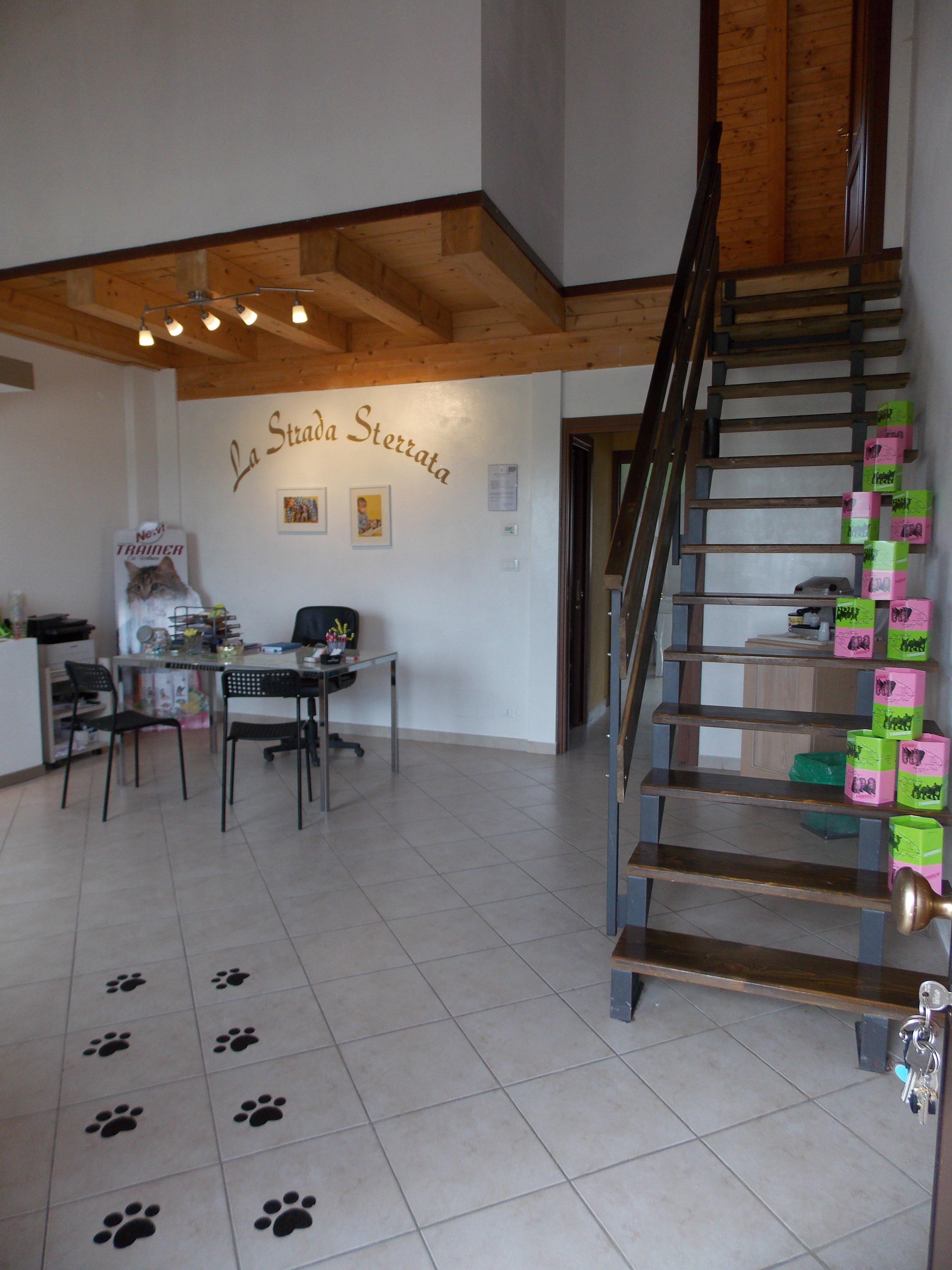 Interno del negozio La Strada Sterrata - Articoli per Animali a Vigone con scala al secondo piano