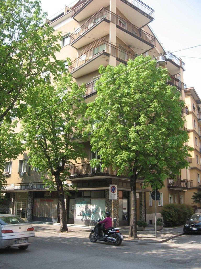 vista di un condominio dietro un albero