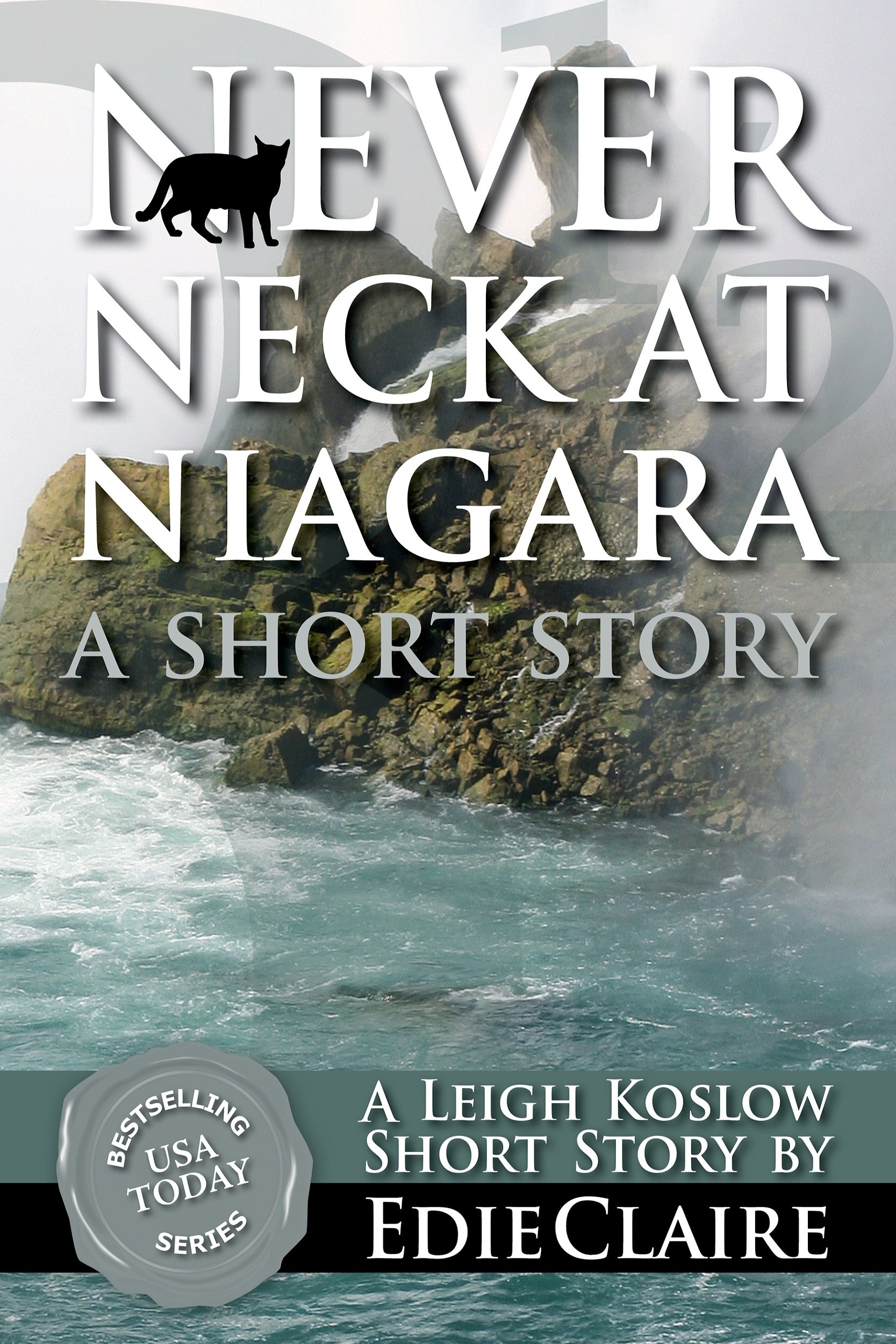 Never Neck at Niagara Cover