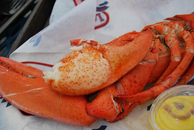 Lobster House Nassau County, NY