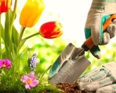 manutenzione giardini pubblici e privati