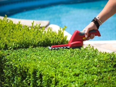 servizio manutenzione giardini