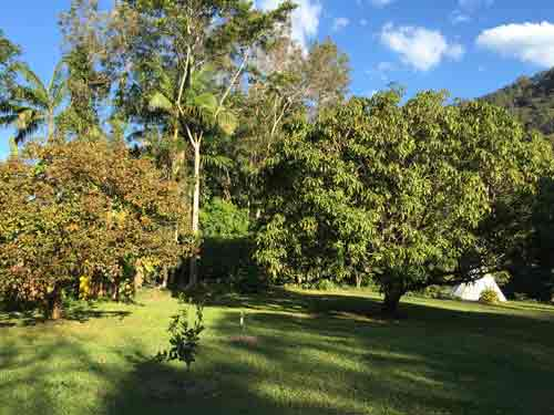 Garden view of the retreats