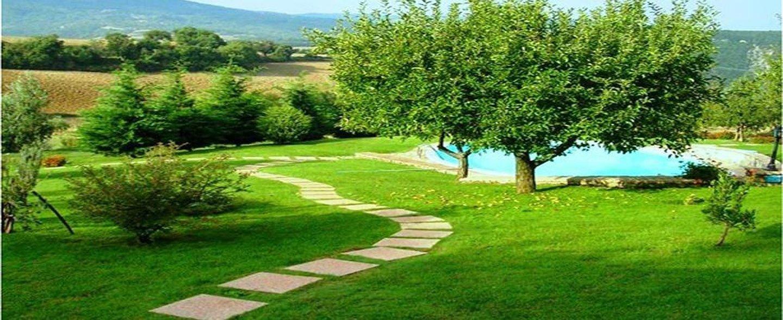 giardino con prato tosato e alberi potati
