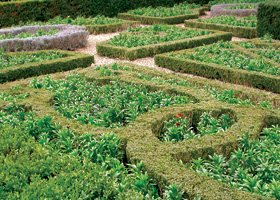 Garden landscaping - Kilmarnock, Scotland - Andrew Daly Gardening Services - Garden landscaping