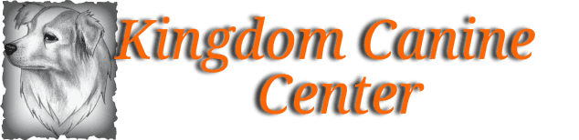 The Kingdom Canine Center in Lyndonville, VT