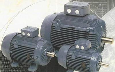 motori elettrici trifasi weg
