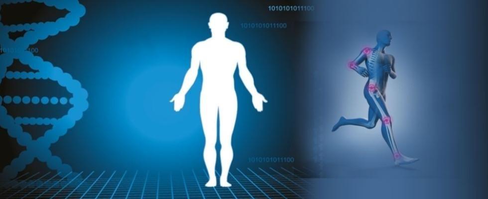 centro di fisioterapia cappelletti