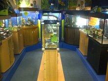 Aquarium and pond accessories - Durham - Fish Alive - Aquariums