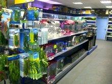 Aquatic products - Durham - Fish Alive - Fish importers