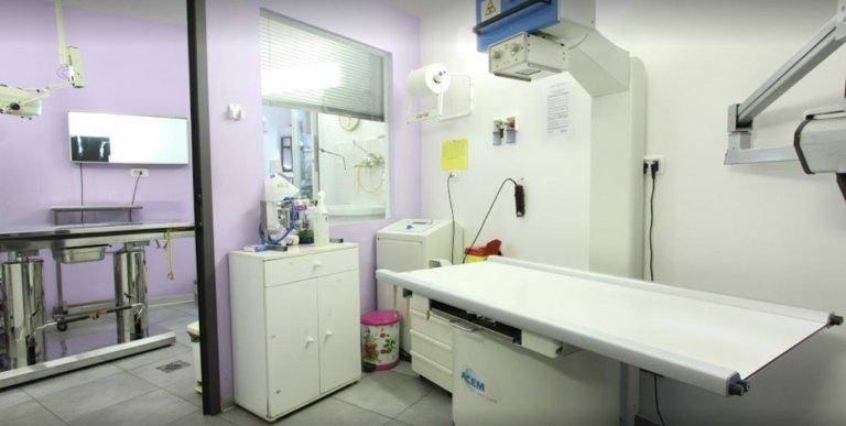 sala operatoria di veterinario
