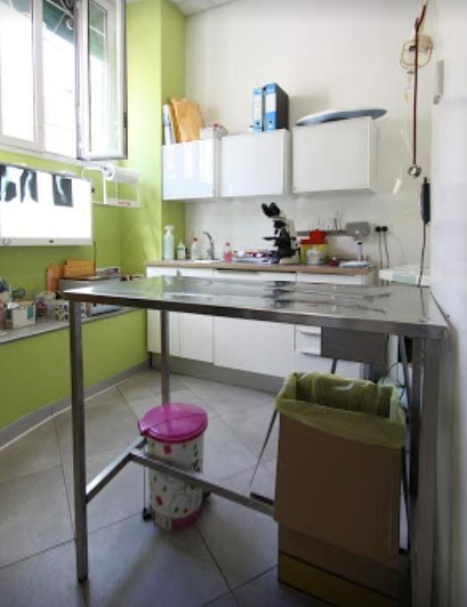 laboratorio del centro veterinario