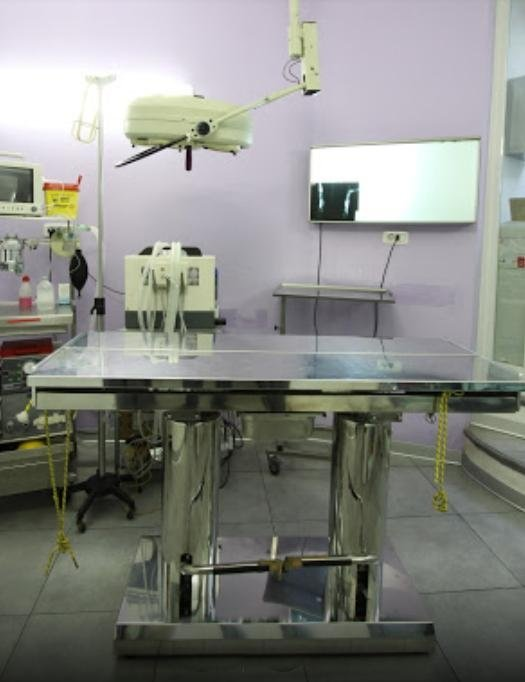 interno della sala operatoria di veterinario