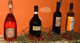 cantina vini, vini in bottiglia, etichette nazionali