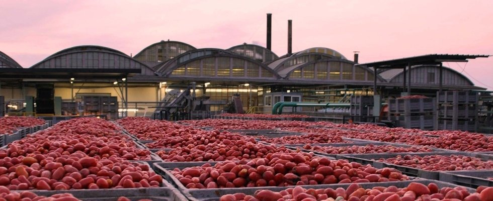 Produttori Agricoli Sardi