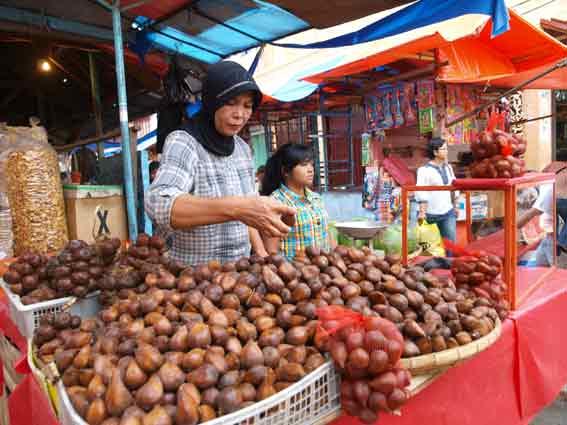 Sumatra Reise Norden in den Westen