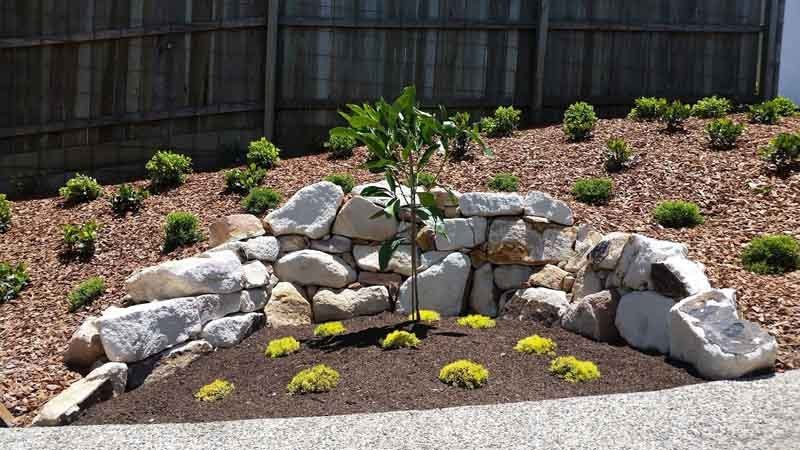 curved rock wall outlining plants