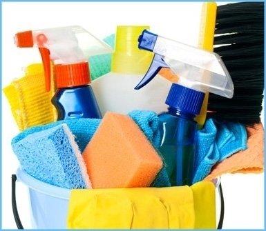prodotti ecologici pulizie