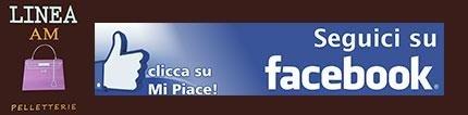 Segui Linea AM su Facebook