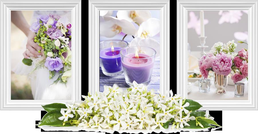 composizioni floreali, vendita piante, vendita fiori