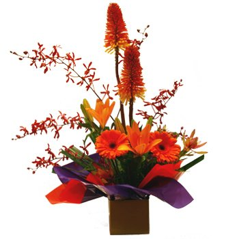 Erindale Florist bright arrangement