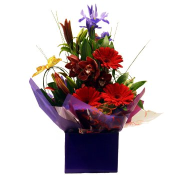 Erindale Florist get well flower arrangement