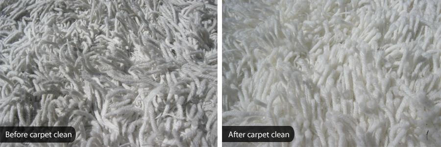 Carpet cleaning as part of cleaning services in Tauranga