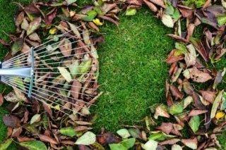 pulizia giardino e spazi condominiali