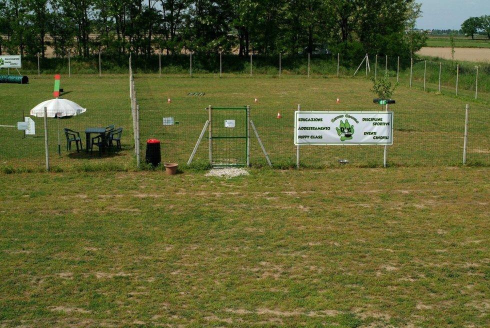 campo addestramento cani
