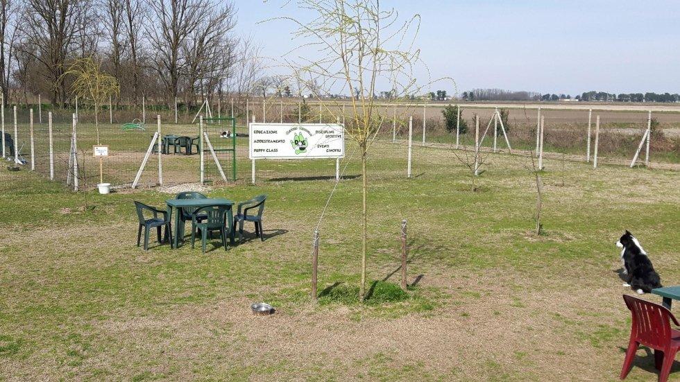 Primo Campo