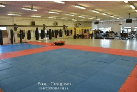 Scuola di arti marziali, sport da combattimento,  palestra fight academy