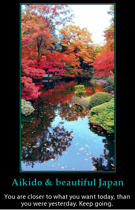 Beautiful autumn photo of nature in Japan