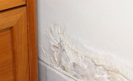 damp proofing treatment