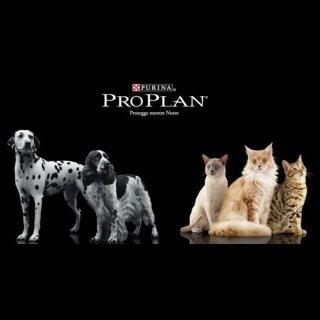 alimenti per animali a marchio PROLAN