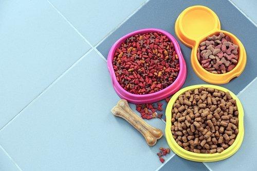 mangime per cani e gatti