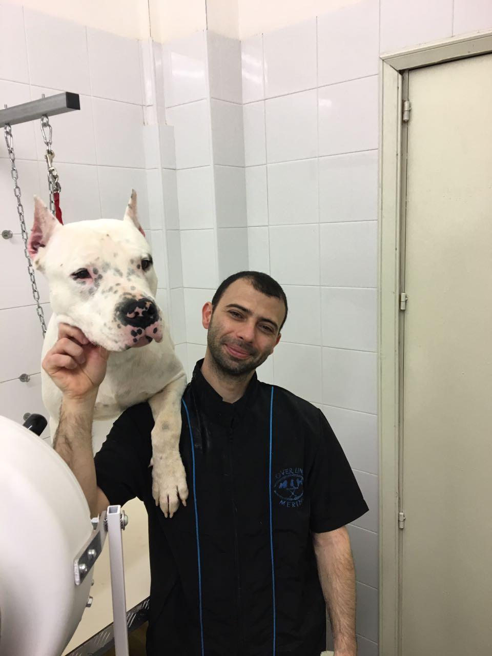 selfie con pitbull