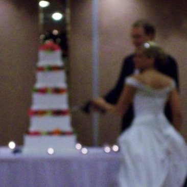 Delicious Creations Wedding Cakes | located near Chicago in Hickory Hills, IL